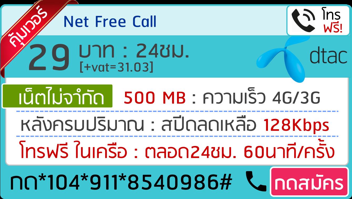 net free call 29บาท 24ชม 911
